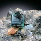 Fluorite<br />Rogerley Mine, Sutcliffe vein, Frosterley, Weardale, North Pennines Orefield, County Durham, United Kingdom England<br />FOV = 6 cm<br /> (Author: Jesse Fisher)