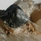 Casiterita.<br />Minas de San Finx, Vilacova, Lousame, Comarca Noia, A Coruña/La Coruña, Galicia, España<br />1 cm. cristal<br /> (Autor: Rafael varela olveira)