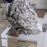 Milarita en Albita<br />Cadalso de los Vidrios, Comarca Sierra Oeste de Madrid, Madrid, Comunidad de Madrid, España<br />9,5 x 6,0 x 3,0 cm.<br /> (Autor: Carles)