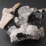 Apophyllite (Series), Calcite, Julgoldite (Series)Andesite Quarry, Kreimbach-Kaulbach, Lauterecken-Wolfstein, Kusel, Rhineland-Palatinate/Rheinland-Pfalz, Germany5 x 4 cm (Author: Andreas Gerstenberg)