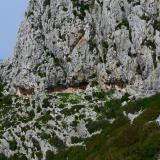 Las calizas están karstificadas, tal como indican los grandes caudales de algunos manantiales en la base de la montaña, las formas de erosión, el lapiaz en superficie y algunas cuevas a la vista. (Autor: Josele)