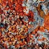 Wavellita<br />Puerto de los Terreros, Sierra del Aljibe, Aliseda, Sierra de San Pedro, Cáceres, Extremadura, España<br />7,5 x 5,7 x 2,5 cms<br /> (Autor: Joan Martinez Bruguera)