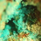Chrysocolla<br />Reformada Mine, El Pinar de Bédar, Bédar, Comarca Levante Almeriense, Almería, Andalusia, Spain<br />FOV 7 mm<br /> (Author: franjungle)