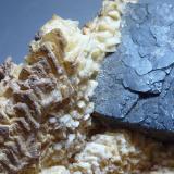 Galena<br />Coto Minero de Aizpea, Minas de Cerain, Zerain, Comarca Goyerri, Gipuzkoa / Guipúzcoa, Euskadi, España<br />6 x 4 cm.<br /> (Autor: javier ruiz martin)