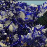 Azurite, Calcite, Malachite<br />Tsumeb Mine, Tsumeb, Otjikoto Region, Namibia<br />28 x 18 x 12mm<br /> (Author: Pierre Joubert)