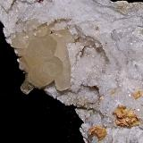 Calcite and Dolomite on Quartz<br />State Route 37 road cuts, Harrodsburg, Clear Creek Township, Monroe County, Indiana, USA<br />The Calcite crystals are up to 3.5 cm<br /> (Author: Bob Harman)