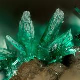Brochantite<br />Potrerillos Mine, Potrerillos, Diego de Almagro, Chañaral Province, Atacama Region, Chile<br />FOV = 1.8 mm<br /> (Author: Doug)