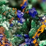 Azurite, Malachite<br />Silver Hill Mine group, Waterman District, Waterman Mountains, Pima County, Arizona, USA<br />FOV = 3.3 mm<br /> (Author: Doug)
