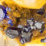 Azurite<br />Friedrichssegen Mine, Frücht, Bad Ems District, Lahn Valley, Rhineland-Palatinate/Rheinland-Pfalz, Germany<br />FOV = 1.4 mm<br /> (Author: Doug)