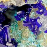 Azurite<br />Old Dick Mine, Santa Rita Mountains, Helvetia, Helvetia-Rosemont District, Pima County, Arizona, USA<br />FOV = 3.5 mm<br /> (Author: Doug)
