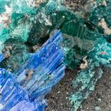 Brochantite, Linarite, Caledonite<br />Blue Bell Mine, Baker, Soda Lake Mountains, San Bernardino County, California, USA<br />FOV = 1.9 mm<br /> (Author: Doug)