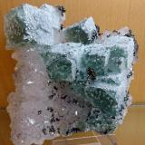 Fluorite<br />El Hamman, Meknès, Meknès Prefecture, Drâa-Tafilalet Region, Morocco<br />14X14 cm. aprox.<br /> (Author: Enrique Llorens)