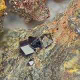Anatase<br />Canaglia Mine, Sassari, Sassari Province, Sardinia/Sardegna, Italy<br />FOV = 4.0 mm<br /> (Author: Doug)