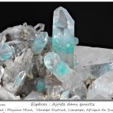 Ajoïte in quartz<br />Messina Mine, Musina (Messina), Vhembe District, Limpopo Province, South Africa<br />fov 40 mm<br /> (Author: ploum)