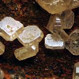 Wulfenite<br />Benahadux Mines, La Partala, Benahadux, Comarca Metropolitana de Almería, Almería, Andalusia, Spain<br />FOV 1.5mm<br /> (Author: Carlos Pareja)