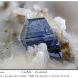 Anatase<br />Ville des Glaciers, Savoie, Auvergne-Rhône-Alpes, France<br />fov 4.8 mm<br /> (Author: ploum)