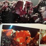 Cinabrio<br />Distrito Minero de Almadén, Almadén, Comarca Valle de Alcudia, Ciudad Real, Castilla-La Mancha, España<br />cristal principal, 1cm<br /> (Autor: Raul Vancouver)