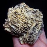 Barita con Goethita pseudo Pirita<br />Mines de Baritina, Coll d'en Peiró, Alforja, Comarca Baix Camp, Tarragona, Catalunya, España<br />12 x 10 x 5 cm.<br /> (Autor: karbu8)