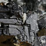 Galena<br />Depósito Batantsi, Mina Batantsi, Zona minera Madan, Montes Rhodope, Smolyan Oblast, Bulgaria<br />1 cm<br /> (Autor: DPC)