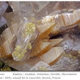 Anatase with Orthoclase (variety adularia), Calcite and Clinochlore<br />Col de la Madeleine, La Lauzière Massif, Saint-Jean-de-Maurienne, Savoie, Auvergne-Rhône-Alpes, France<br />fov 5.6 mm<br /> (Author: ploum)
