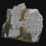 Pirita, Cuarzo<br />Zona minera Madan, Montes Rhodope, Smolyan Oblast, Bulgaria<br />6,5 x 6,4 cm.<br /> (Autor: Xavier bordas)