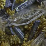 Orpiment, Baryte, Hutchinsonite<br />Quiruvilca Mine (La Libertad Mine), Quiruvilca District, Santiago de Chuco Province, La Libertad Department, Peru<br />FOV appr. 5 mm<br /> (Author: Rob Schnerr)