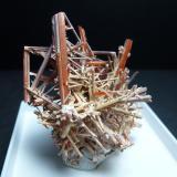 Gibbsita y Crocoita<br />Mina Adelaide, Dundas, Distrito Zeehan, Consejo Costa Oeste, Tasmania, Australia<br />5,5 x 3,5 cm.<br /> (Autor: javier ruiz martin)