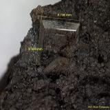 Barita.<br />Corta Santa Matilde, Grupo minero Berja, Las Herrerías, Sierra Almagrera, Cuevas del Almanzora, Comarca Levante Almeriense, Almería, Andalucía, España<br />0´90 x 0´73 mm.<br /> (Autor: Jesus Franquesa Baucells)