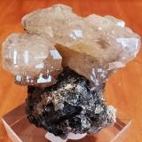 Cerusite<br />Touissit, Touissit District, Jerada Province, Oriental Region, Morocco<br />5 cm x 6 cm.<br /> (Author: Enrique Llorens)