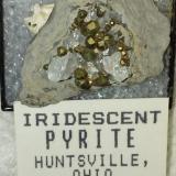 Pyrite and Calcite<br />C. E. Duff & Son Quarry, Huntsville, Logan County, Ohio, USA<br />32 mm<br /> (Author: R Saunders)