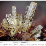 Adamite with Goethite<br />Ojuela Mine, Mapimí, Municipio Mapimí, Durango, Mexico<br />fov 2.2 mm<br /> (Author: ploum)
