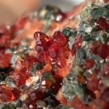 Grossular (variety hessonite), Diopside, Clinochlore<br />Bellecombe, Châtillon, Aosta Valley (Val d'Aosta), Italy<br />86 x 66 mm<br /> (Author: Sante Celiberti)