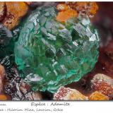 Adamite<br />Hilarion Mine, Hilarion area, Kamariza Mines, Agios Konstantinos, Lavrion Mining District, Attikí (Attica) Prefecture, Greece<br />fov 2.1 mm<br /> (Author: ploum)