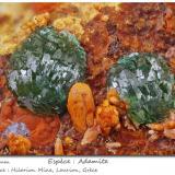 Adamite<br />Hilarion Mine, Hilarion area, Kamariza Mines, Agios Konstantinos, Lavrion Mining District, Attikí (Attica) Prefecture, Greece<br />fov 3.2 mm<br /> (Author: ploum)
