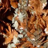 Siderite, Calcite, Pyrite, Baryte<br /><br />180 x 130 mm<br /> (Author: Sante Celiberti)