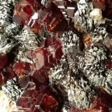 Grossular (variety hessonite), Clinochlore<br />Faiallo Pass, Urbe, Savona Province, Liguria, Italy<br />119 x 101 mm<br /> (Author: Sante Celiberti)