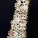 Barita<br />Mina San Camilo, Vista Alegre, Cartagena, Comarca Campo de Cartagena, Murcia, Región de Murcia, España<br />11 x 3.5 cm<br /> (Autor: Pedro Antonio)
