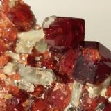 Grossular (variety hessonite), Diopside, Clinochlore<br />Susa Valley, Torino Province, Piedmont (Piemonte), Italy<br />106,6 x 65 mm<br /> (Author: Sante Celiberti)