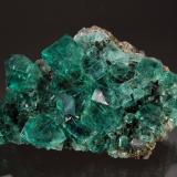 Fluorite<br />Rogerley Mine, Diana Maria Mine (Sutcliffe Vein) , Frosterley, Weardale, North Pennines Orefield, County Durham, England / United Kingdom<br />Diana Maria Mine (Sutcliffe Vein), Rogerley Quarry, Frosterley, Weardale, County Durham, England<br /> (Author: Michael Shaw)