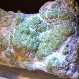 Andradite (variety demantoid), asbestos<br />Malenco Valley (Valmalenco), Sondrio Province, Lombardy, Italy<br />125 x 78,3 mm<br /> (Author: Sante Celiberti)