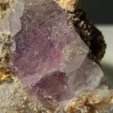 Fluorite<br />Paglio Pignolino Mine, Dossena, Brembana Valley, Bergamo Province, Lombardy/Lombardia, Italy<br />77,5 x 47,5 mm<br /> (Author: Sante Celiberti)