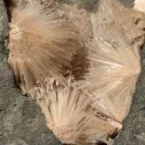 Natrolite<br />Piz Sella, Plan de Gralba, Selva di Val Gardena, SouthTirol, Trentino-Alto Adige, Italy<br />127 x 90 mm<br /> (Author: Sante Celiberti)