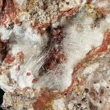 Dawsonite<br />Terlano (Terlan), Bolzano Province, Trentino-Alto Adige (Trentino-Südtirol), Italy<br />10 x 9 cm<br /> (Author: Volkmar Stingl)