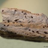 Dolomita (variedad teruelita)<br />Vilanova de la Sal, Comarca Noguera, Lleida / Lérida, Catalunya, España<br />85 x 45 mm<br /> (Autor: Joan Niella)