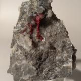 Cinnabar, Millerite, Dolomite<br />Siele Mine, Amiata Mountain, Piancastagnaio, Siena Province, Tuscany, Italy<br />52 x 43 mm<br /> (Author: Sante Celiberti)
