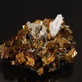 Chalcopyrite and quartz<br />Boldut Mine, Cavnic mining area, Cavnic, Maramures, Romania<br />5.5 cm x 7.5 cm.<br /> (Author: Michael Shaw)