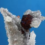 Esfalerita<br />Mina Kangjianwan, Shuikoushan, Changning, Prefectura Hengyang, Provincia Hunan, China<br />cristal 10 mm<br /> (Autor: Ramon A  Lopez Garcia)