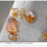 Anatase on Quartz<br />Valleggia Glacier, Valleggia Valley,  Bedretto Valley, Ronco sopra Ascona, Leventina, Ticino (Tessin), Switzerland<br />fov 1.25 mm<br /> (Author: ploum)