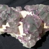 Fluorite<br />De'an Mine, Wushan, De'an, Jiujiang Prefecture, Jiangxi Province, China<br />17 x 9 cm<br /> (Author: Volkmar Stingl)