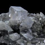 Fluorite<br />Eggl Alp, Dambach valley, Kirchdorf an der Krems, Upper Austria/Oberösterreich, Austria<br />FOV 16 x 12 mm<br /> (Author: Gerhard Brandstetter)